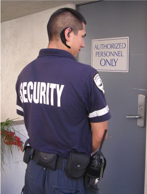 Security job tips